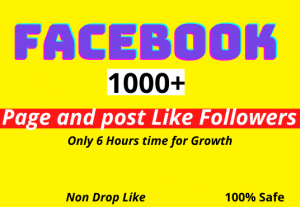 Add 1000+ Page like followers and pic post like instant within 6 hours and non drop
