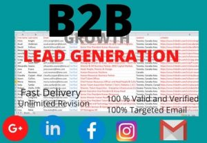 I will do 300 b2b lead generation and business email