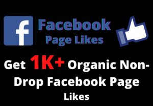 Get 1000+ Organic Non-Drop Facebook Page Likes