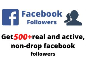 Get 500+ real and active, non-drop facebook followers