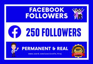I Will Provide 250 Real Facebook Followers.(Permanent & Non Droppable)