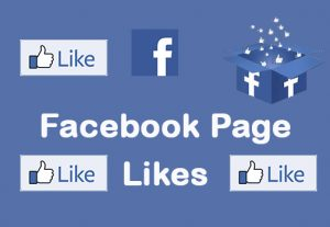 I will provide 1000+ Facebook Page Likes non-drop and Organic