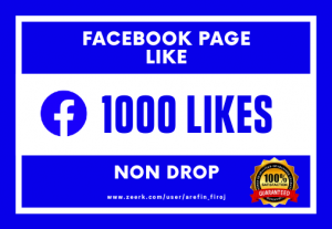 I Will Provide 1000 Real Likes on Your Facebook Page (Non Drop)