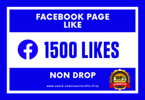 I Will Provide 1500 Real Likes on Your Facebook Page (Non Drop)