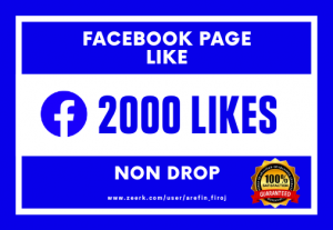 I Will Provide 2000 Real Likes on Your Facebook Page (Non Drop)