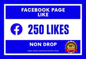 I Will Provide 250 Real Likes on Your Facebook Page (Non Drop)