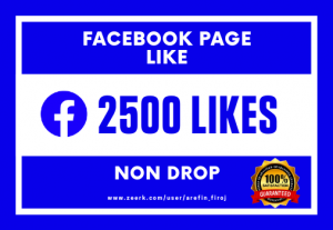 I Will Provide 2500 Real Likes on Your Facebook Page (Non Drop)