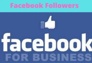I will provide 4000+ Followers to your Facebook Profile