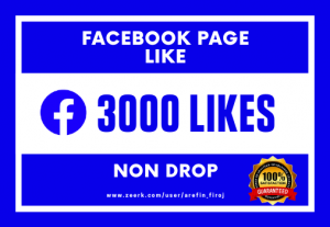 I Will Provide 3000 Real Likes on Your Facebook Page (Non Drop)
