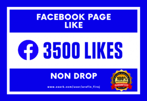 I Will Provide 3500 Real Likes on Your Facebook Page (Non Drop)