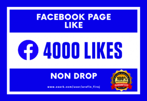 I Will Provide 4000 Real Likes on Your Facebook Page (Non Drop)