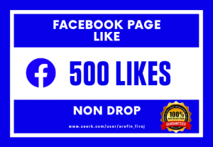 I Will Provide 500 Real Likes on Your Facebook Page (Non Drop)