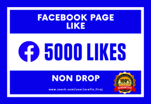 I Will Provide 5000 Real Likes on Your Facebook Page (Non Drop)