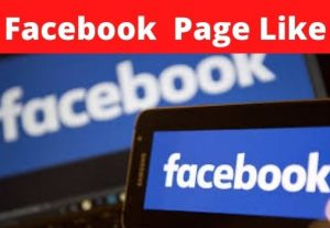 I will instant  4k  Facebook Fanpage Likes 100% Non-Drop,