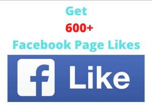 I will give 600+ real Facebook Page Likes || 100% original || Permanent