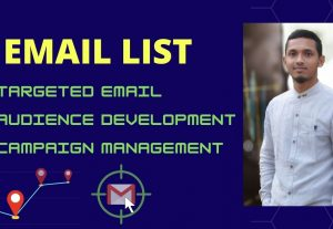 I will build 3000 targeted email list