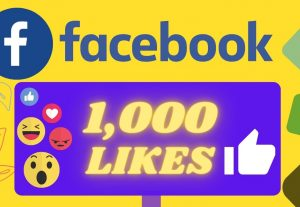 I will Provide 1000 Organic None drop facebook Likes