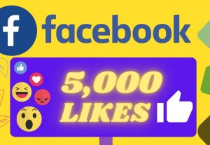 I will Provide 5000 Organic None drop facebook Likes
