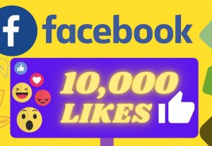 I will Provide 10,000 Organic None drop facebook Likes