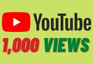 I will provide 1000 Youtube Views High retention and Non Drop Instant Start