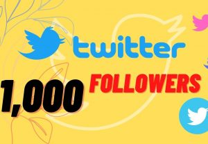 I will add 1000 followers for your twitter account