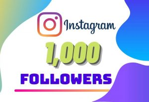 I will Provide 1000 Instagram followers
