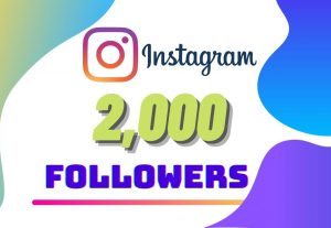 I will Provide 2,000 Instagram followers