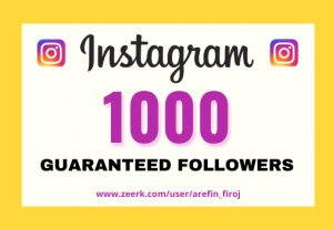 I will provide Instant 1,000+ real Instagram followers in your account