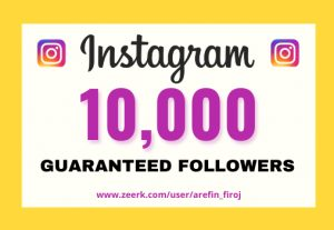I will provide Instant 10,000+ real Instagram followers in your account