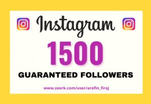 I will provide Instant 1,500+ real Instagram followers in your account