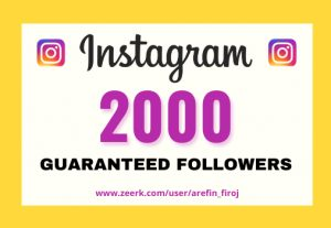 I will provide Instant 2,000+ real Instagram followers in your account