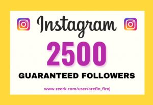 I will provide Instant 2,500+ real Instagram followers in your account