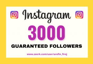 I will provide Instant 3,000+ real Instagram followers in your account