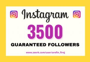I will provide Instant 3,500+ real Instagram followers in your account