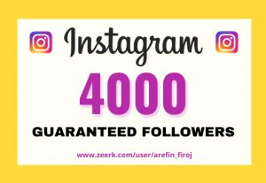 I will provide Instant 4,000+ real Instagram followers in your account