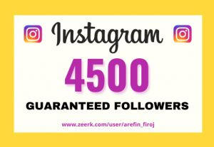 I will provide Instant 4,500+ real Instagram followers in your account
