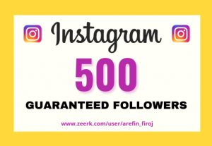I will provide Instant 500+ real Instagram followers in your account