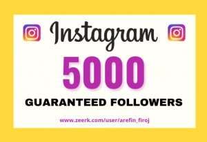 I will provide Instant 5,000+ real Instagram followers in your account