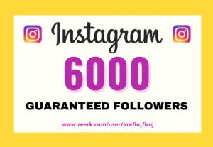 I will provide Instant 6,000+ real Instagram followers in your account