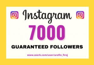 I will provide Instant 7,000+ real Instagram followers in your account