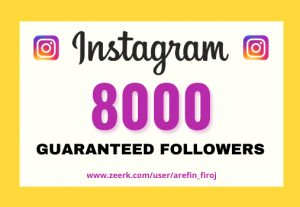 I will provide Instant 8,000+ real Instagram followers in your account