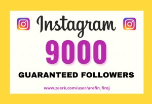 I will provide Instant 9,000+ real Instagram followers in your account