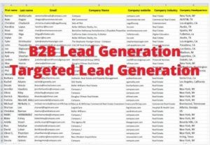 I will collect 1000 Leads, B2B Leads,  Lead Generation 100% clean and Verified