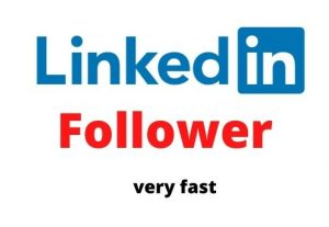 I will do 300 LinkedIn followers on your Company pages or profile