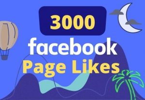 I will give 3000 likes on your facebook page