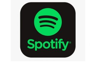 I will Get You 5000+ Spotify plays the best quality service worldwide