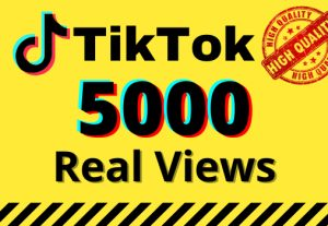 I will give you 5k real views on your TikTok videos