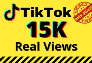 I will give you 15k real views on your TikTok videos