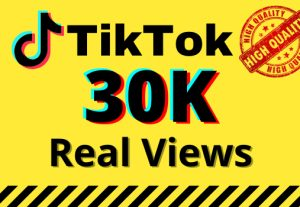 I will give you 30k real views on your TikTok videos