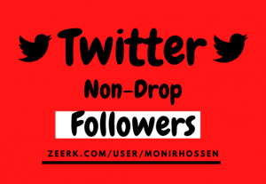 I will Provide High-Quality & Real Non-Drop 1000 Twitters Followers